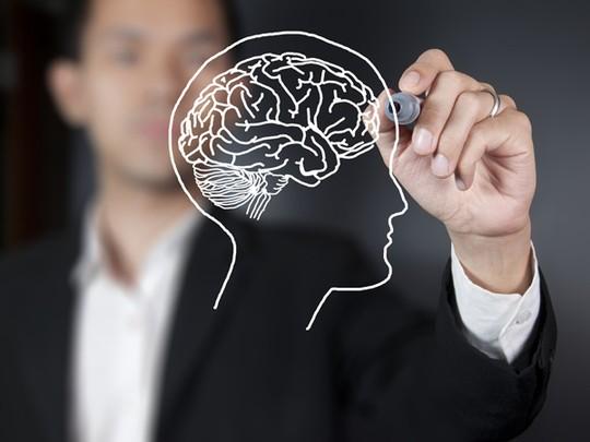 Những điều thú vị về não