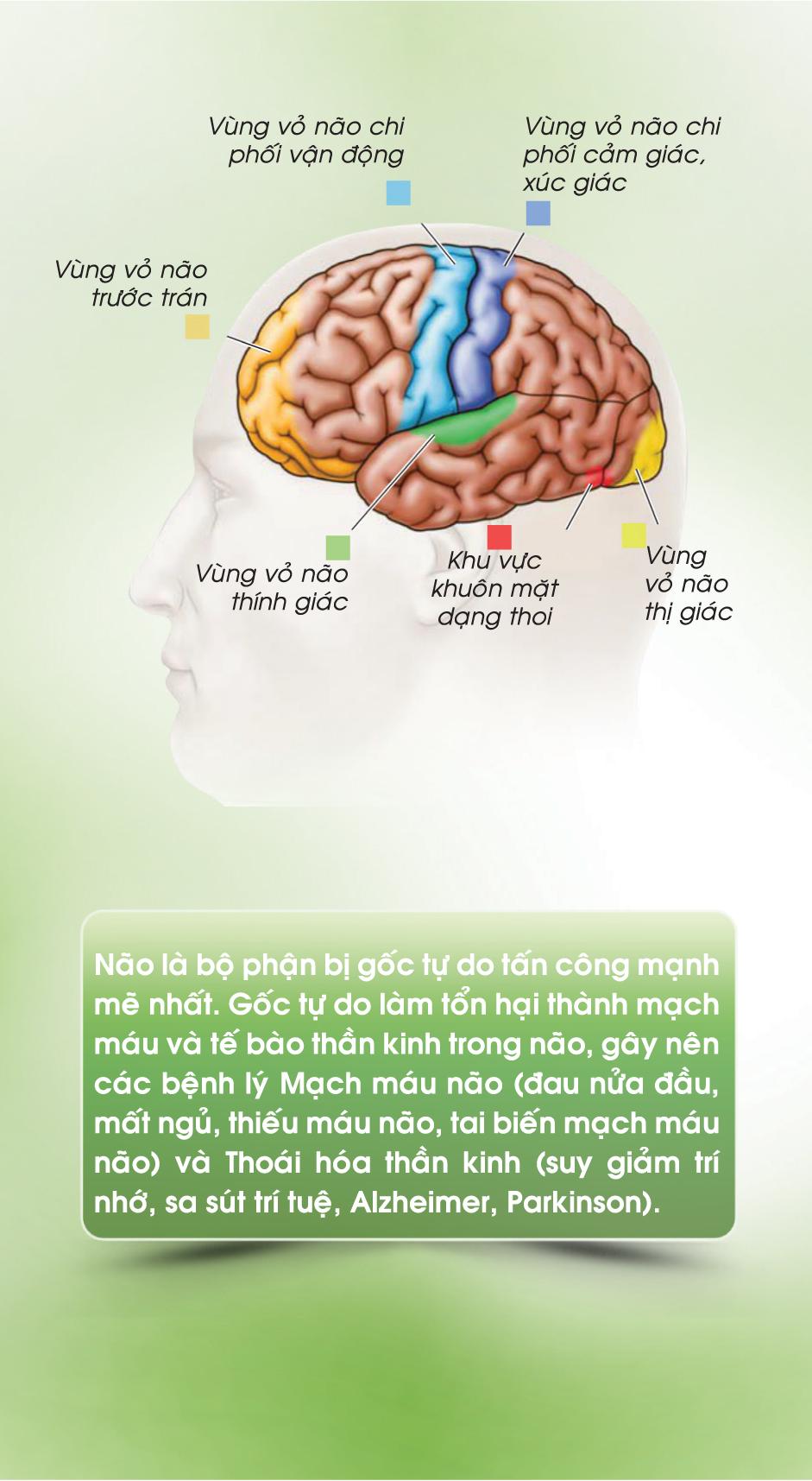 thường xuyên trò chuyện giúp bệnh nhân cải thiện trí nhớ