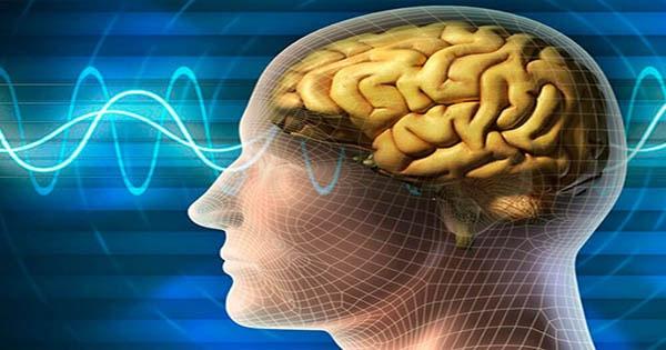 điều trị teo não