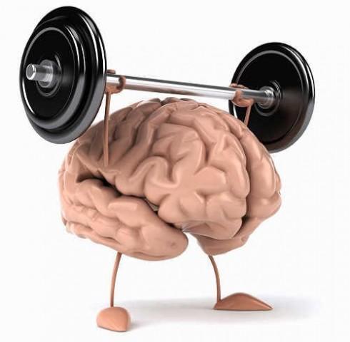 Cách chăm sóc não bộ giúp rèn luyện trí nhớ, tư duy tốt trong công việc