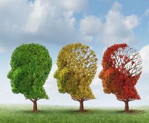 Hay quên, suy giảm trí nhớ và cách khắc phục