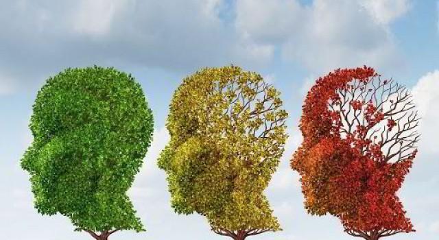 Hay quên, suy giảm trí nhớ và cách khắc phục tận gốc