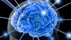 4 liệu pháp triển vọng từ nghiên cứu về não