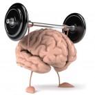 Bài tập cho não bộ chống suy giảm trí nhớ