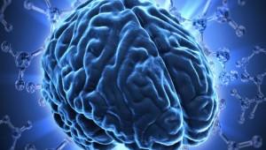 Thoái hóa tế bào thần kinh não từ sau tuổi 24