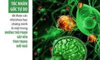 Làm sao hỗ trợ  cải thiện chứng mất ngủ, rối loạn giấc ngủ lâu ngày