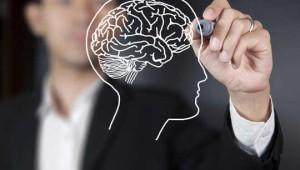 8 điều thú vị có thể bạn chưa biết về bộ não