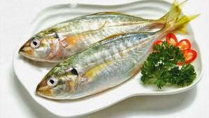 Acid domoic trong hải sản - Thủ phạm gây hại thận và não