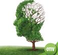 Bệnh teo não là gì? Nguyên nhân, triệu chứng và cách điều trị