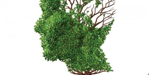 Bệnh teo não là gì? Nguyên nhân, triệu chứng và cách cải thiện