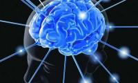 Biện pháp giúp phục hồi trí nhớ một cách tự nhiên